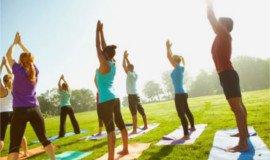 Activité de Team Building Atelier de yoga