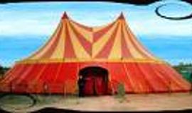 Activité de Team Building Le cirque